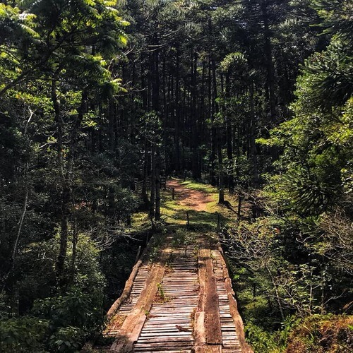 zona rural de gonçalves