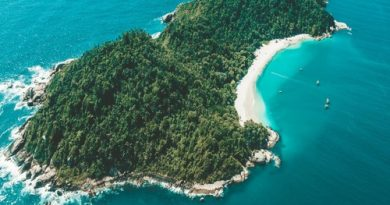 Ilha do Campeche: passeio, dicas e como chegar nesse paraíso