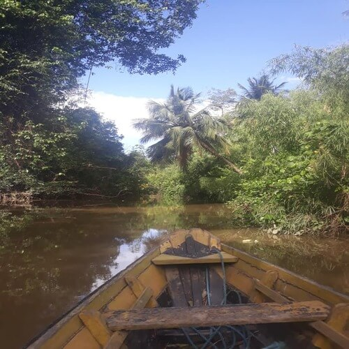 passeio de barco ilha de marajó