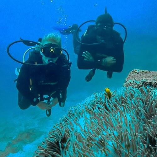 Mergulho nas Ilhas Phi Phi